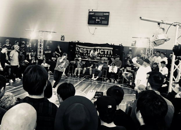 Destructive Steps / NSW DMC 2018